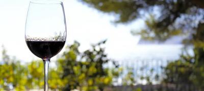 Hiszpańskie winnince - wina z Hiszpanii, które cię zaskoczą