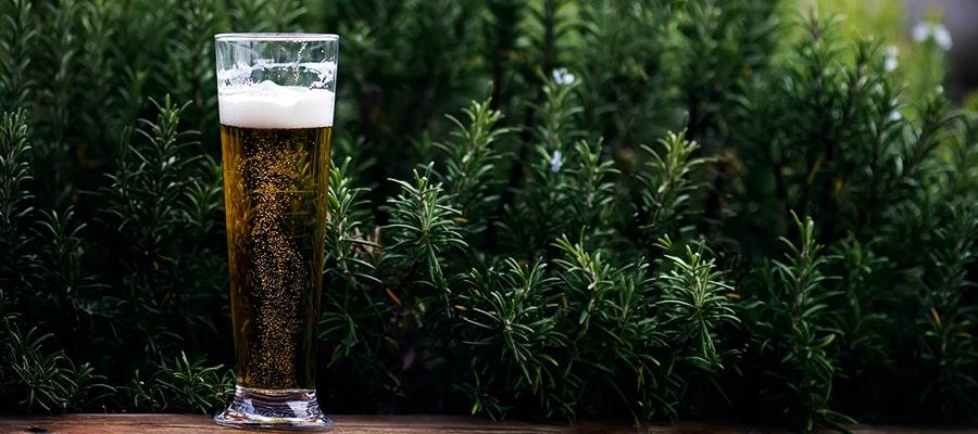 Piwa kraftowe - dlaczego są wyjątkowe?